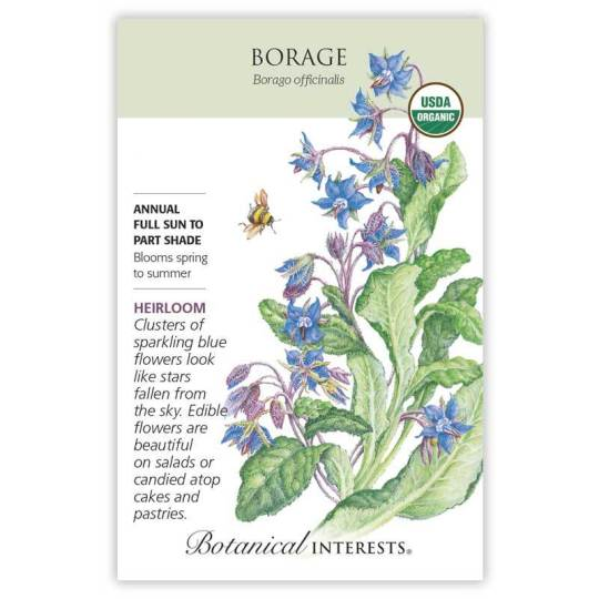 Borage, Copyright Botanical Interests